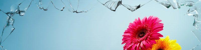 אהבה ו-OCD – היבטים פסיכולוגיים ומוחיים